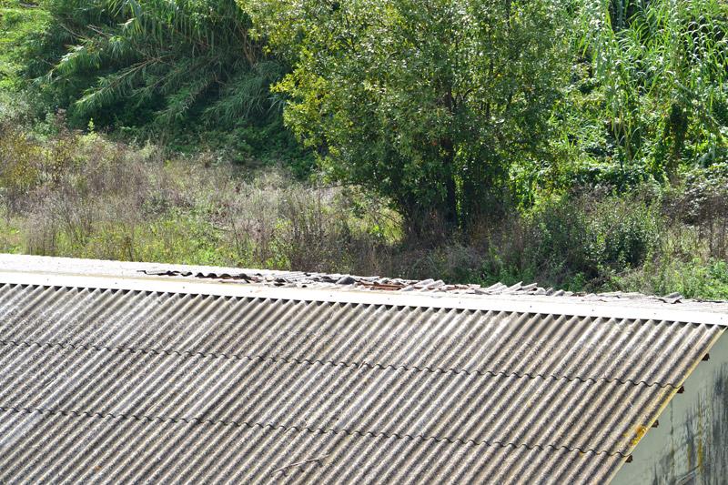 I tetti in disfacimento