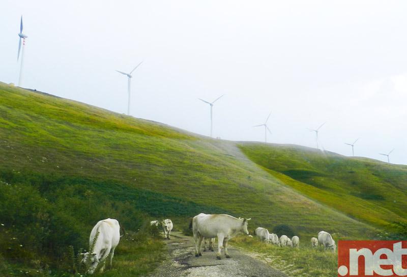Il parco eolico di Roccaspinalveti